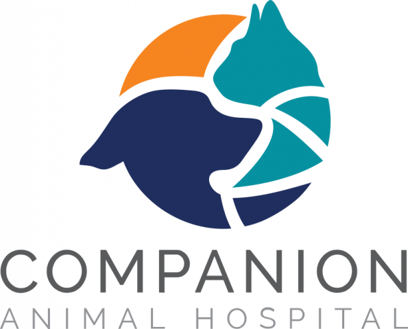 Linden, Michigan Veterinarian Animal Clinic | Companion Animal Hospital